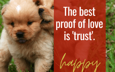 The best proof of love is 'trust'!